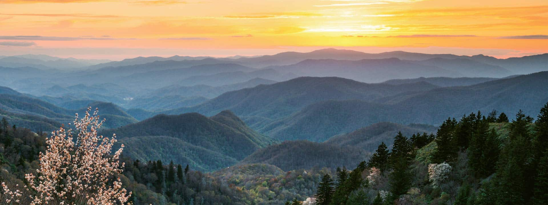 Sylva, NC Lawyer personal injury and workmans compensation